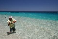 Baja-BO-fish-on-beach-1-72-600