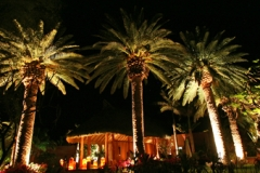 Baja-great-room-3-72-600