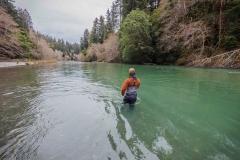 smith river california steelhead fishing