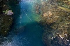 spey casting on the North Umpqua River for steelhead