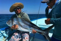 roosterfish catch