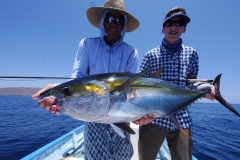 Yellowfin tuna catch