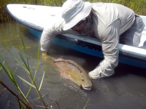 redfish, fly fishing